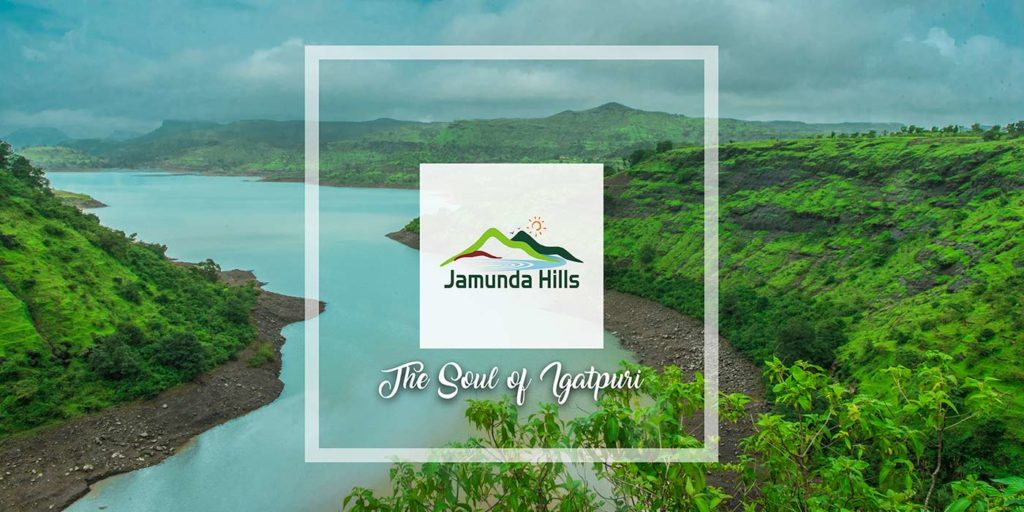 Lead To Site Visit Ratio Shot Up By 200% Using Marketing collateral | Jamunda hills