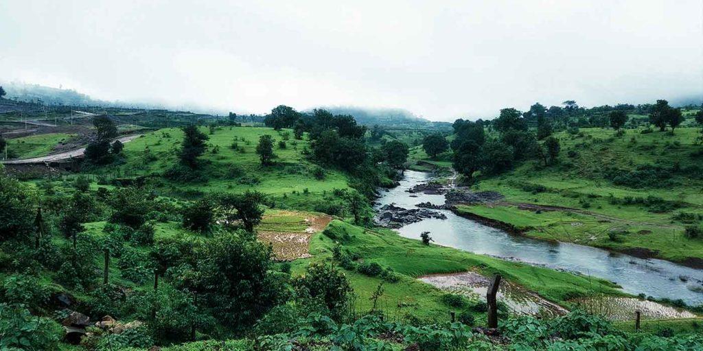40,000 Organic Reach On Social Media With Special Diwali Campaign | Jamunda Hills